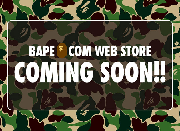 http://kkwu.files.wordpress.com/2009/01/a-bathing-ape-online-store.jpg